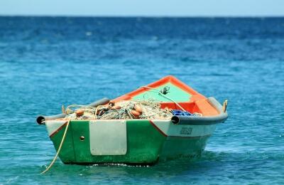 Промышленный вылов рыбы не подлежит лицензированию