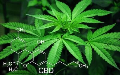 Статус медичної марихуани в Україні